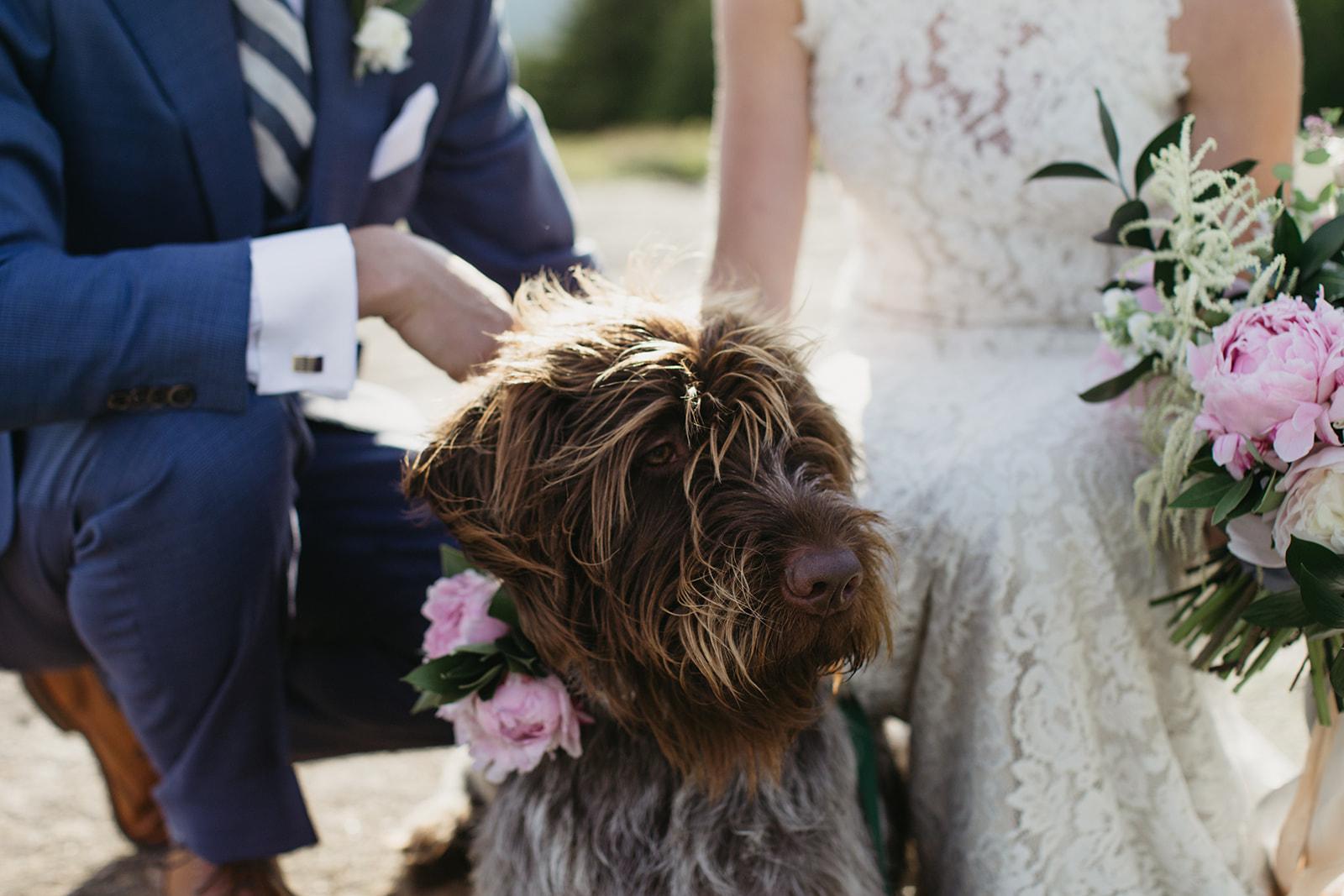 Watershed_Floral_Acadia_Maine_Wedding_Florist__Acadia_281.jpg