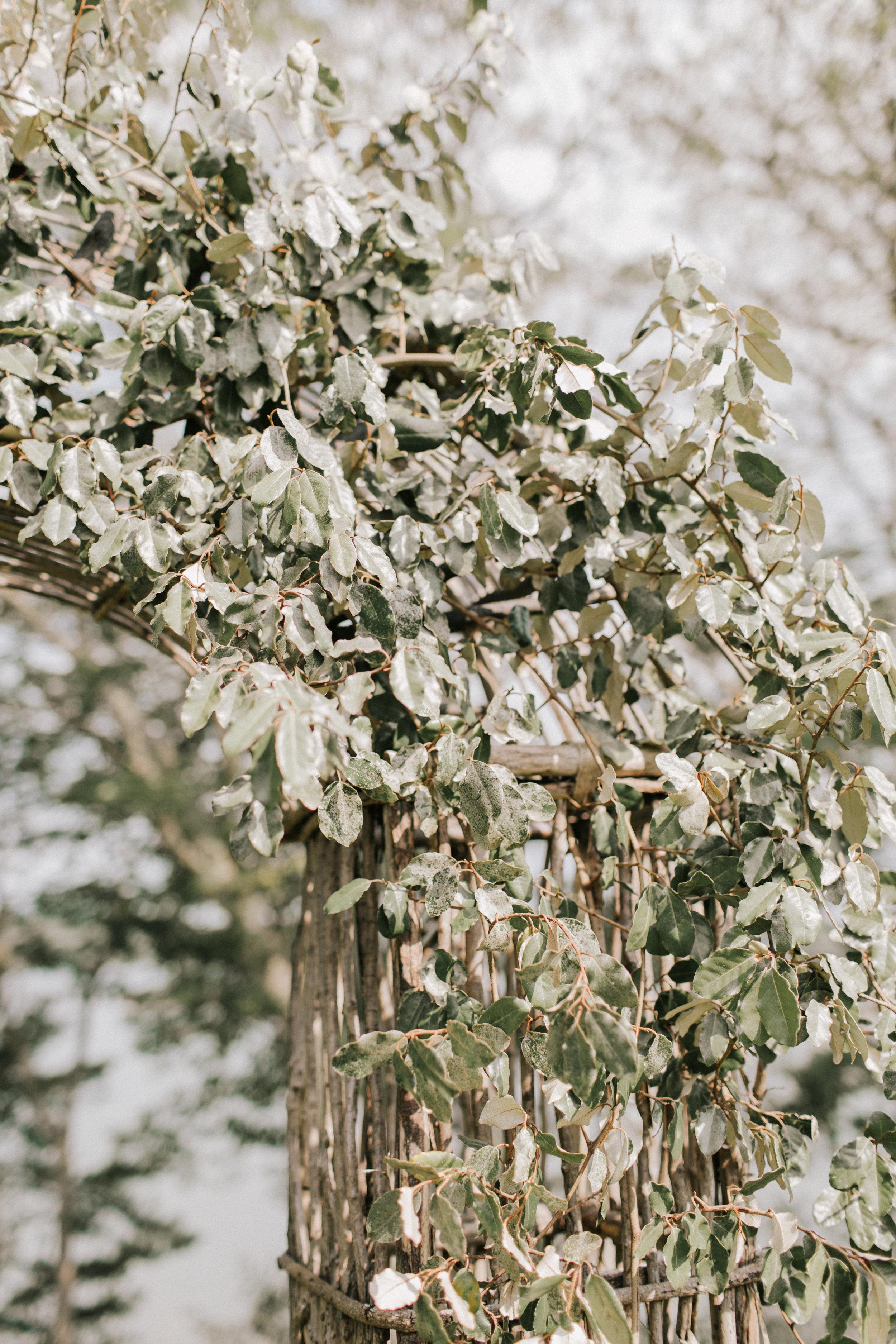 Watershed_Floral_Marianmade_Farm_Wedding_JamieMercurioPhoto2018-212.jpg
