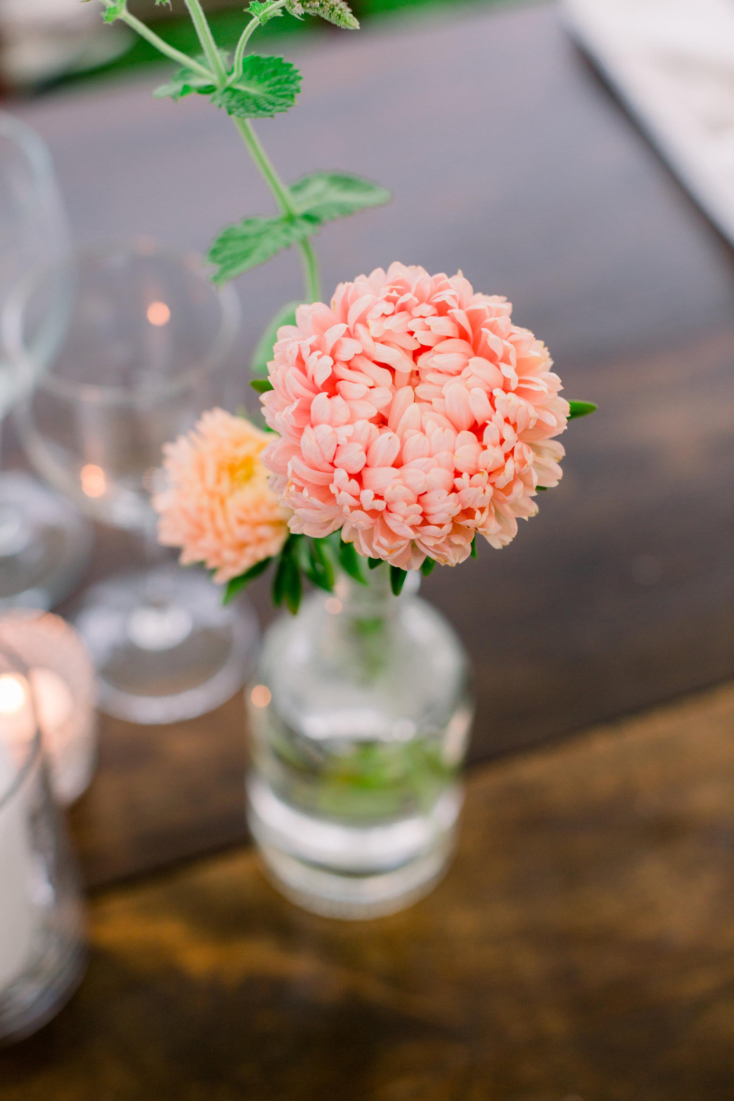 Watershed_Floral_Newagen_Wedding_Maine_6047.jpg