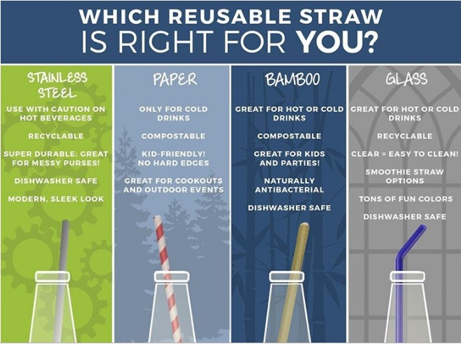 Which+reusable+straw+is+right+for+you.jpg