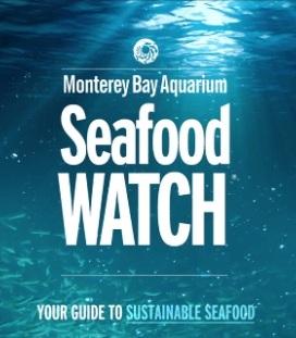 Seafood%2BWatch%2BApp.jpg
