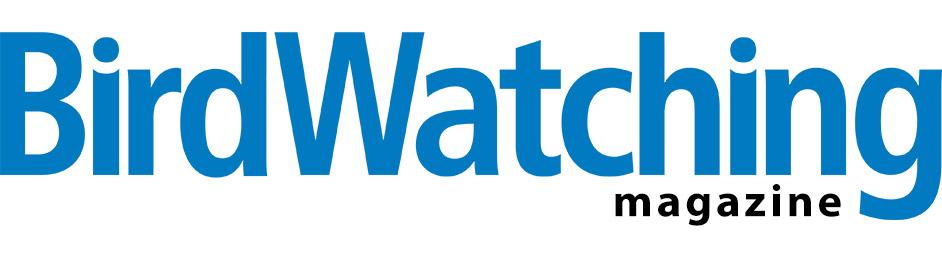 BW_Sub_Logo.jpg