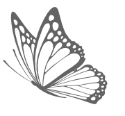 2019 Anima Butterfly Logo Website.png