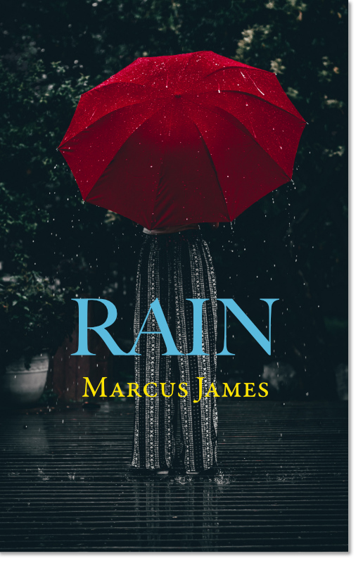Rain Cover for Website.jpg