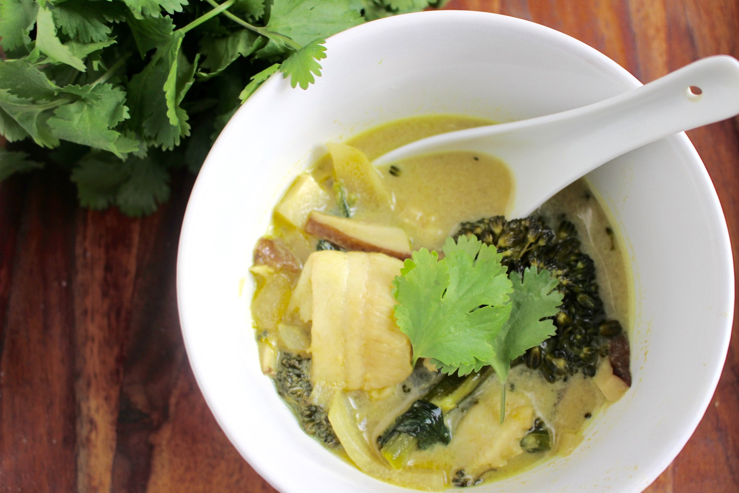Green curry fish stew | Me & The Moose. Bottled green curry makes quick work of this tasty Thai-inspired stew that's chock full of fish and veggies. #meandthemoose #Thaicurry #healthymeals #whole30 #whole30recipes #onepotmeals #dinnerrecipes