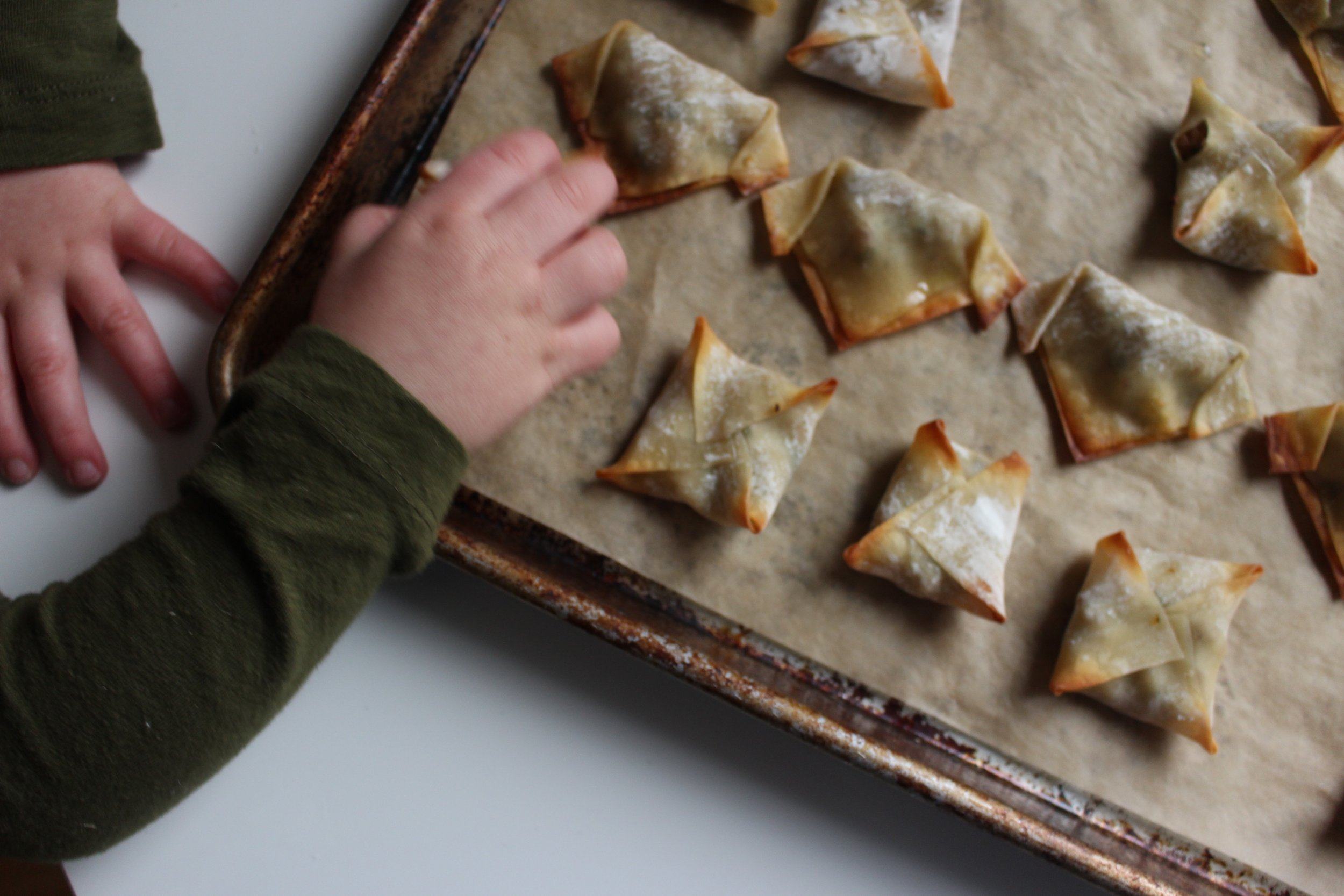 Turkey dumplings | Me & the Moose. Precooked filling speeds up the process of making these dumplings that are a fun vehicle for veggies and protein for lunchboxes, snacks, and dinners. #meandthemoose #dumplings #turkey #luncboxinspo #lunchboxideas #kidscooking #kidsrecipes #healthykidrecipes