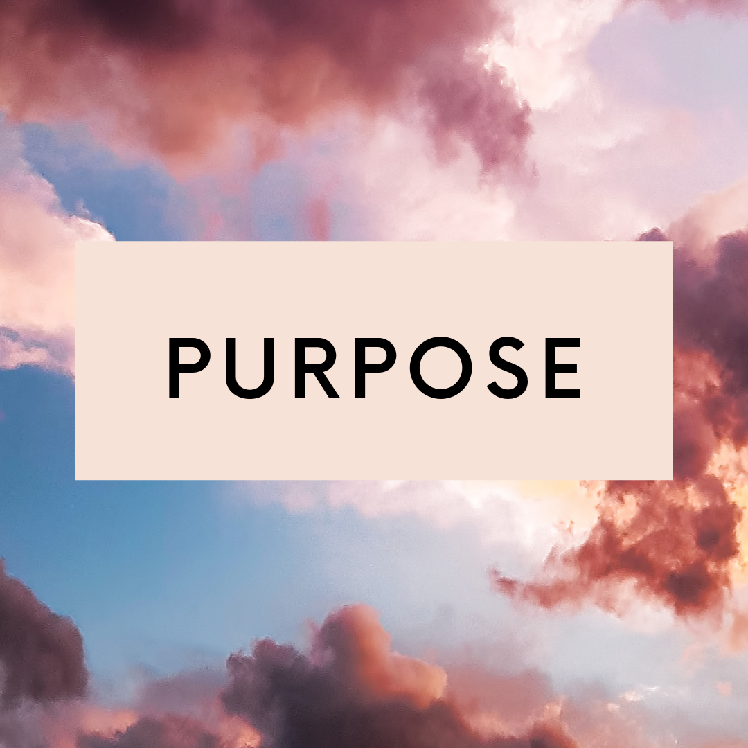 Any journey begins with purpose. Do you know your why? Your mission? What it is that is going to make people sit up and say, I need this person in my life? Aligning with purpose is where the magic happens.