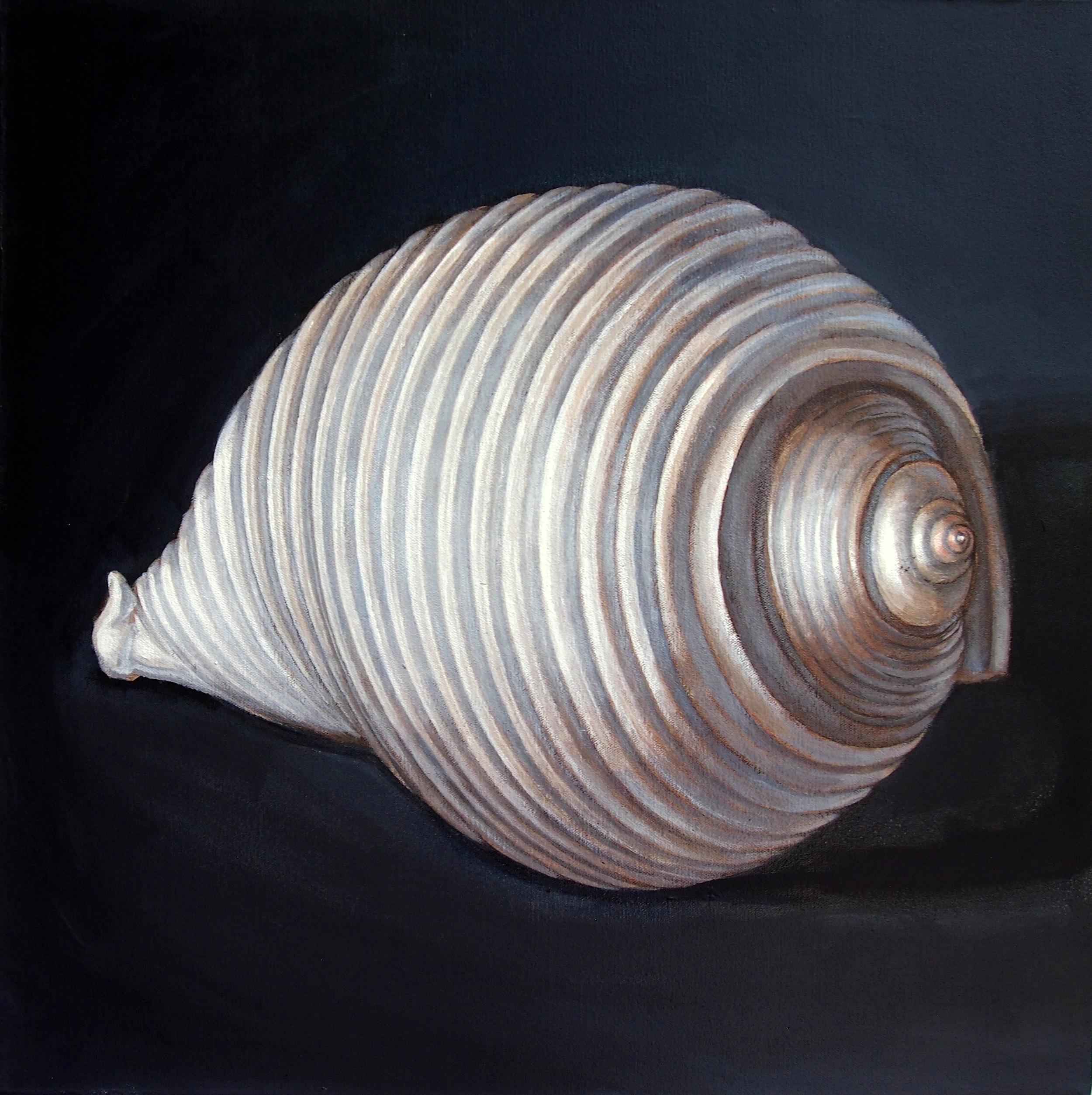 White Ton Shell