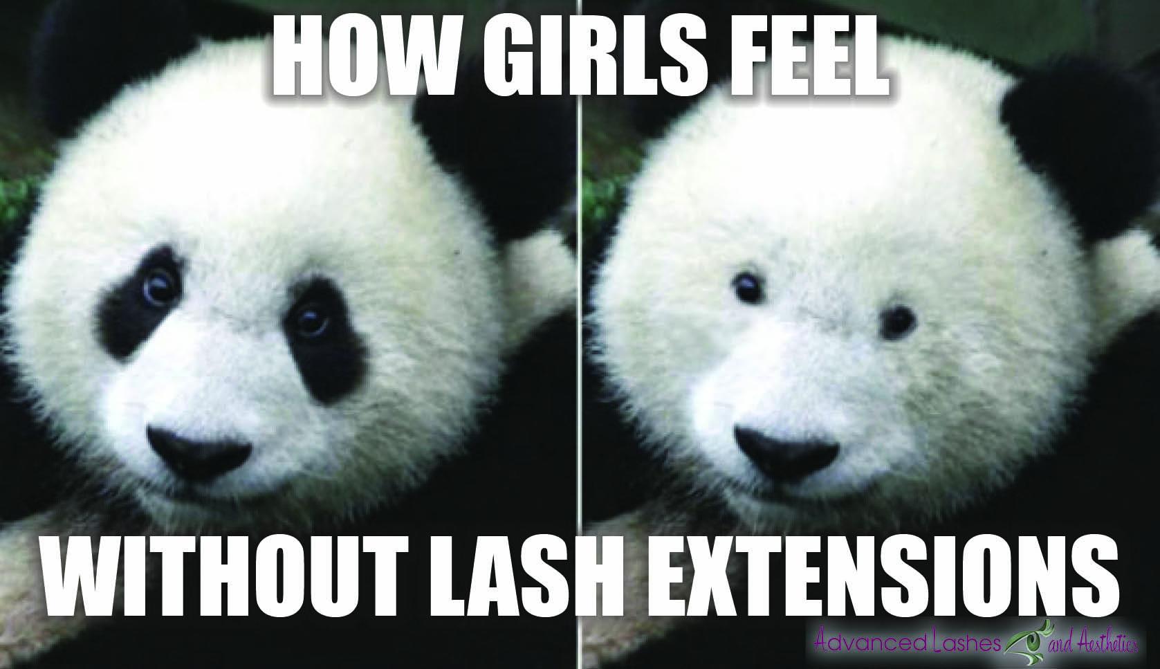 panda bear eyelashes meme