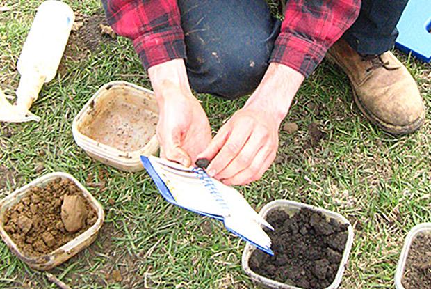 Soil_Judging_2013_WI-030.jpg