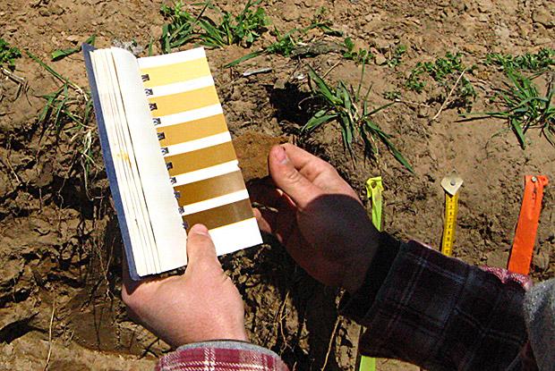 Soil_Judging_2013_WI-046.jpg