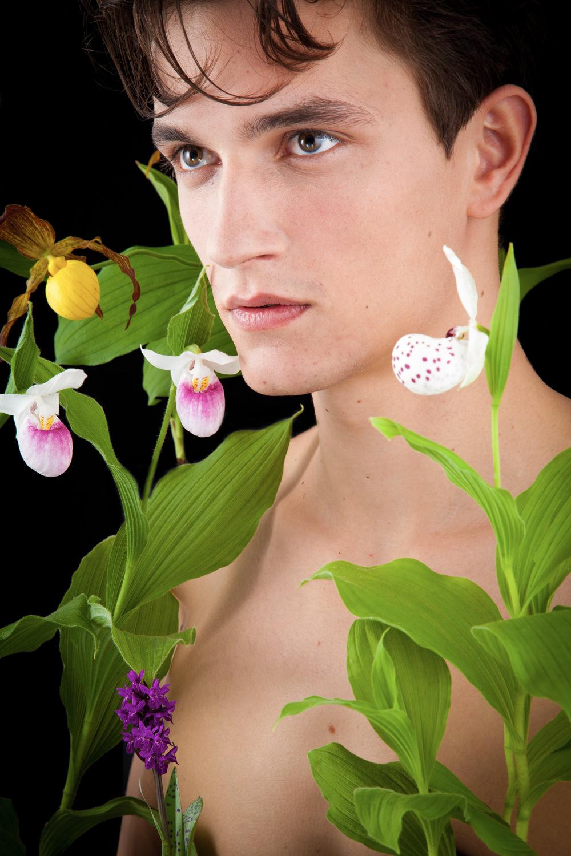Orchideen mit einem Model präsentiert