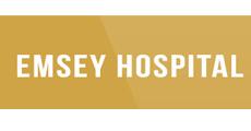 emsey_logo.jpg