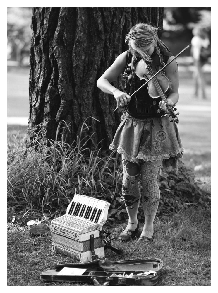 violinframe.jpg