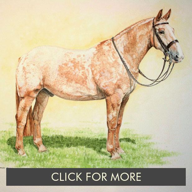 HorsesPage02_0002_pink punch.jpg.jpg