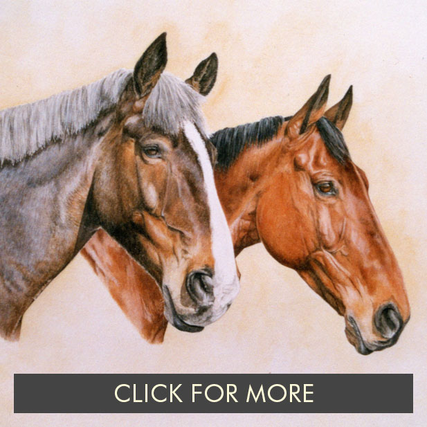 HorsesPage02.jpg
