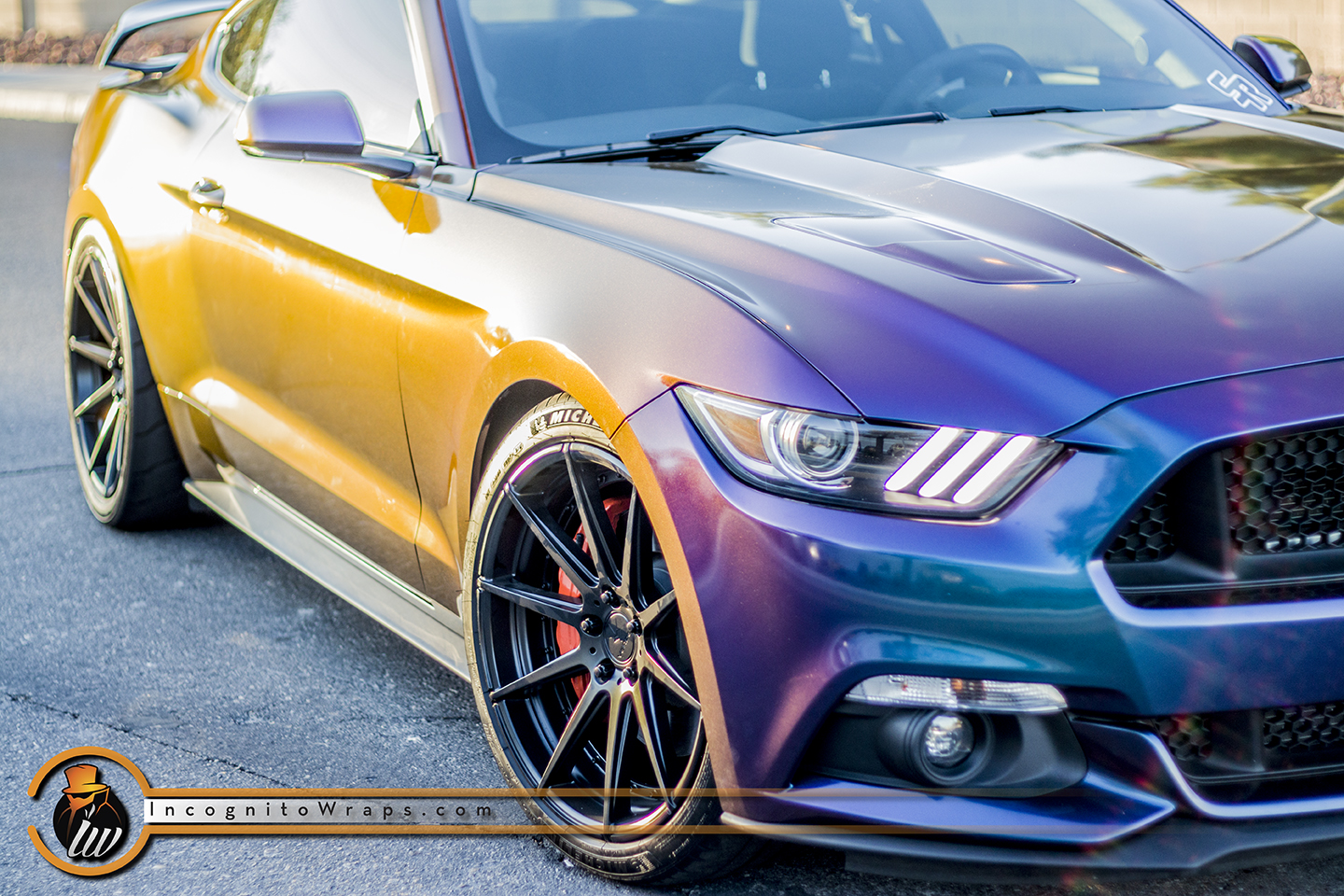 Ford Mustang GT - Rushing Riptide