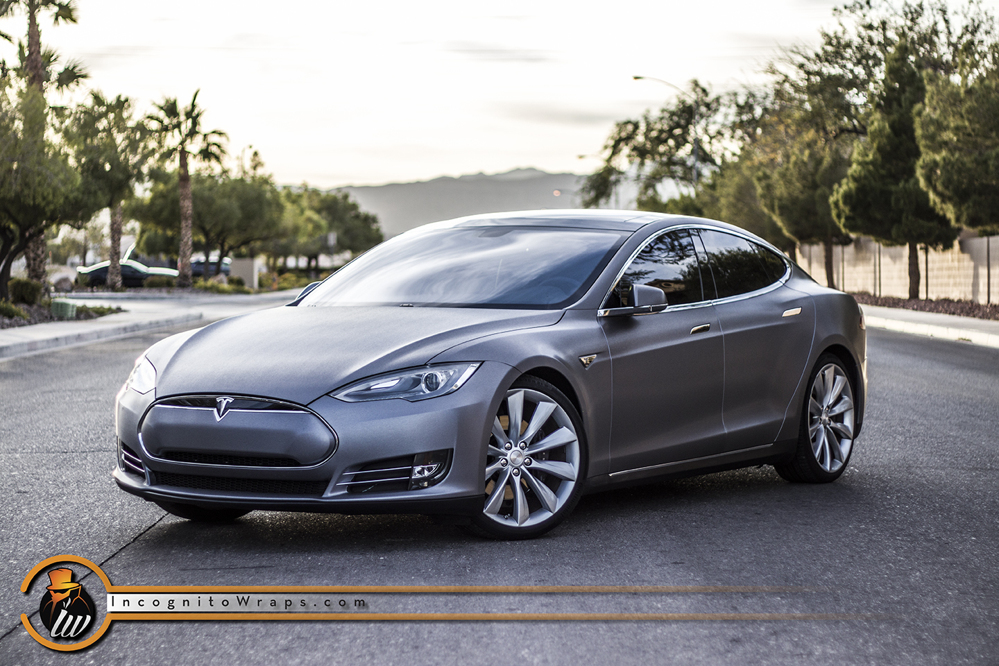 Tesla Model S First Generation - Brushed Steel