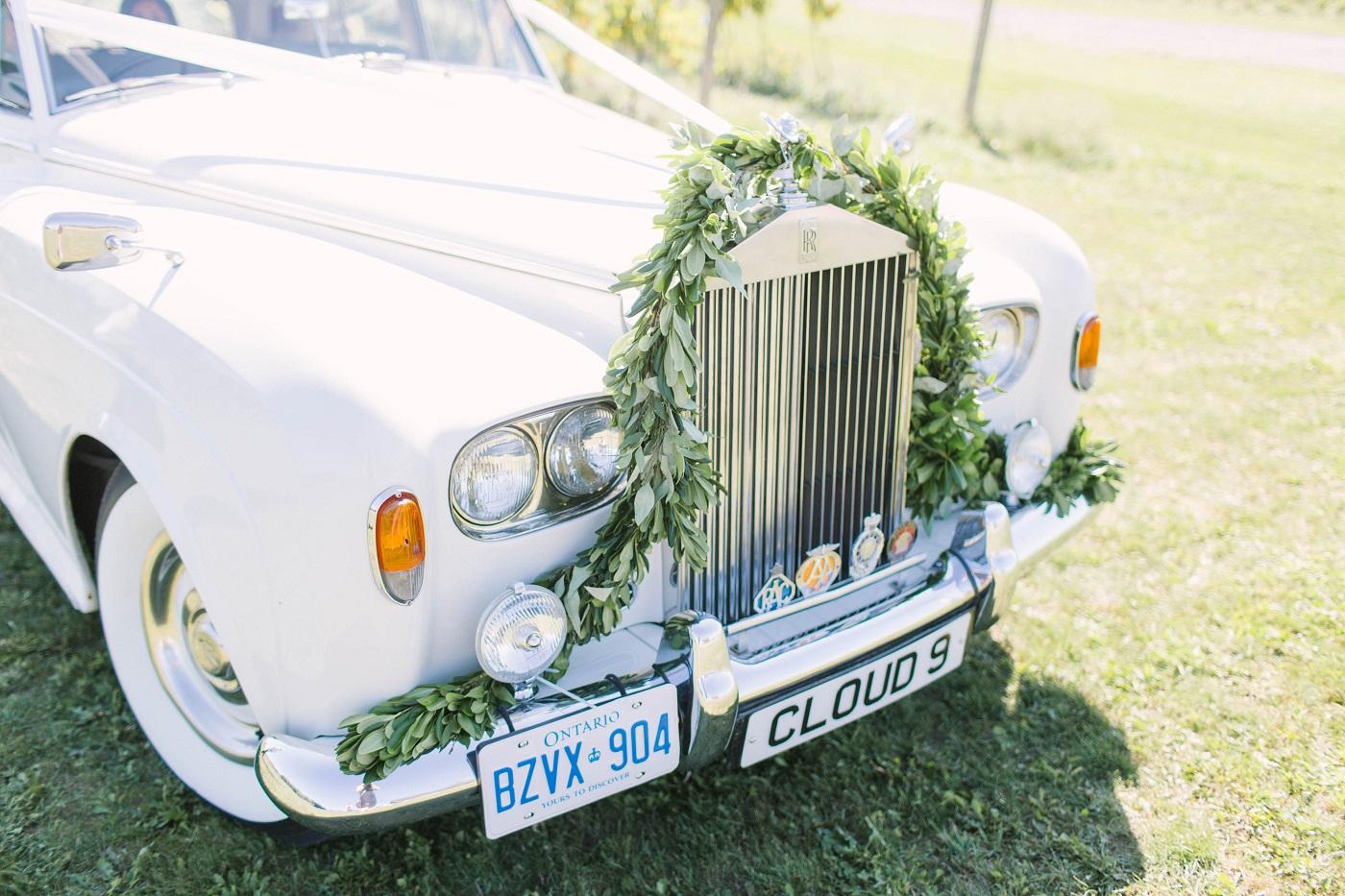liuna-gardens-wedding-hamilton-kj-and-co-5.JPG