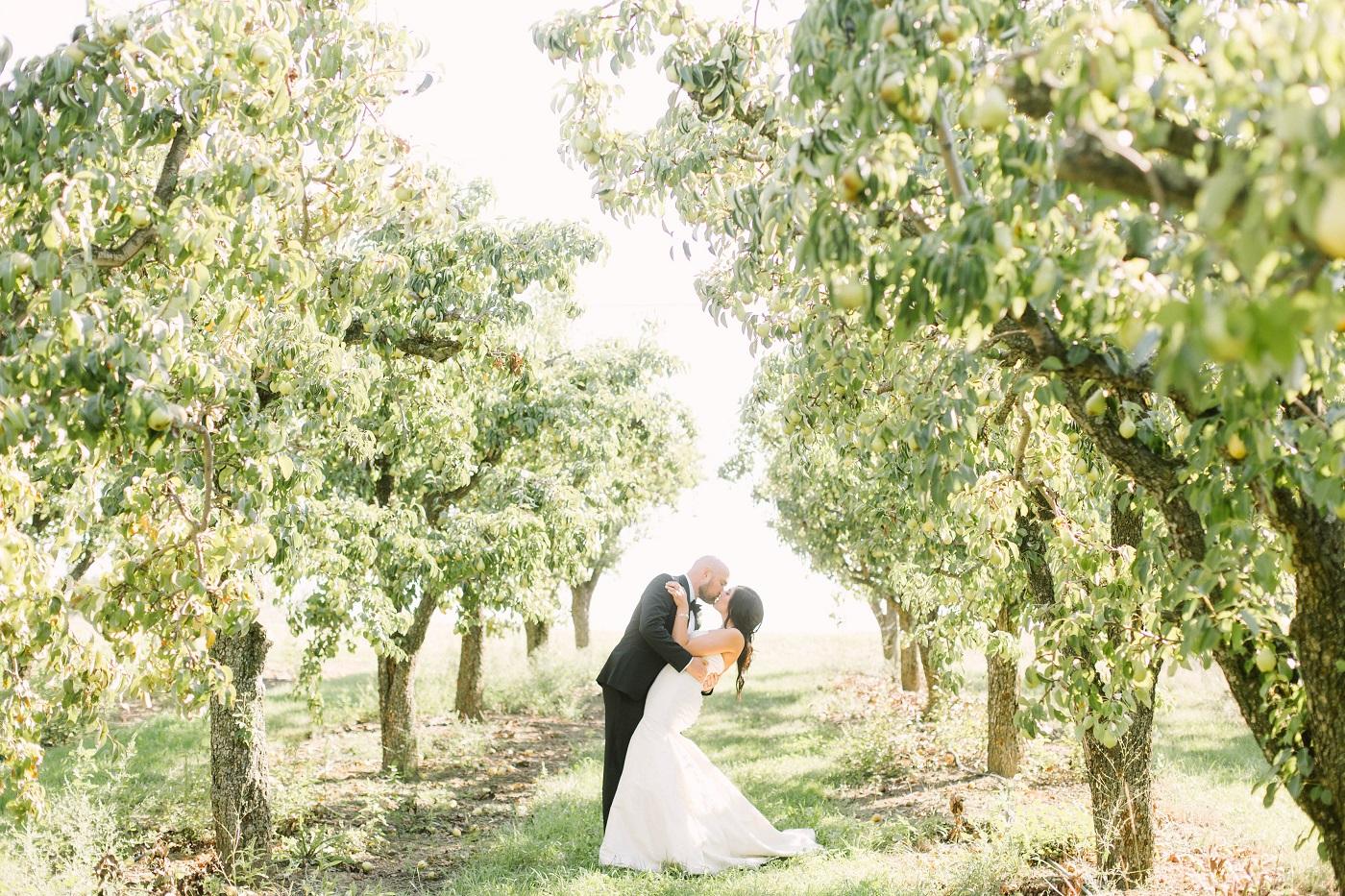 liuna-gardens-wedding-hamilton-kj-and-co-12.JPG