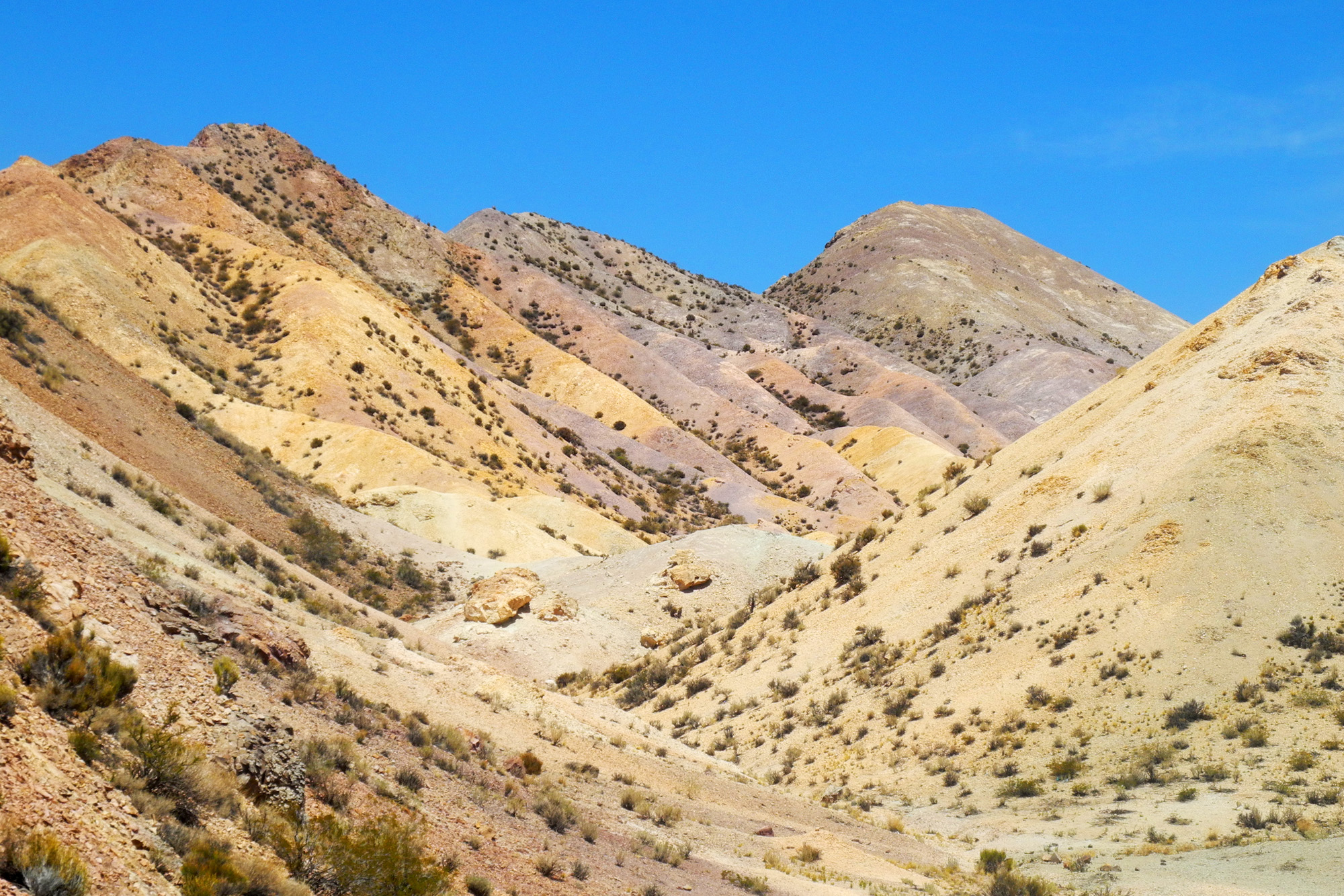 wine-TROTTERS_oenotourisme_wine-tourism-agency_tour_vino_vin_turismo_ARGENTINA_Mendoza_trekking_hiking_horseback-riding_alta-montana_Andes_2_WEB-2000px.jpg