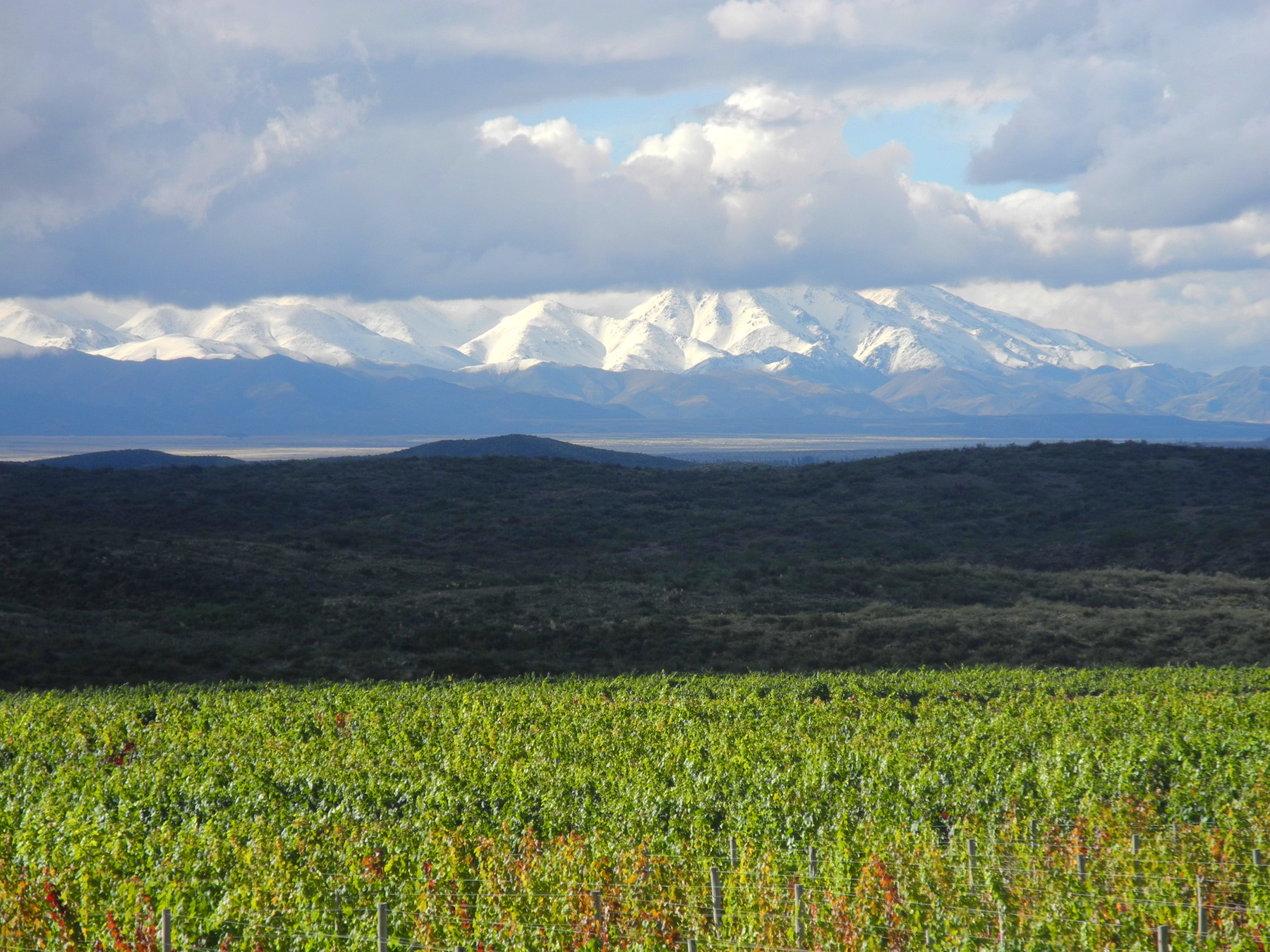 wine-TROTTERS_wine-tourism-agency_tour_wineries_vineyards_gastronomy_passion_Andes_34_WEB.jpg