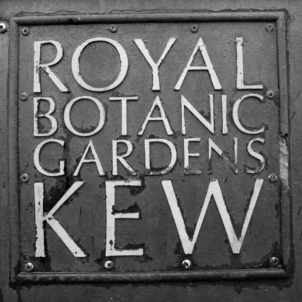 kew_sign-1024x1024.jpg