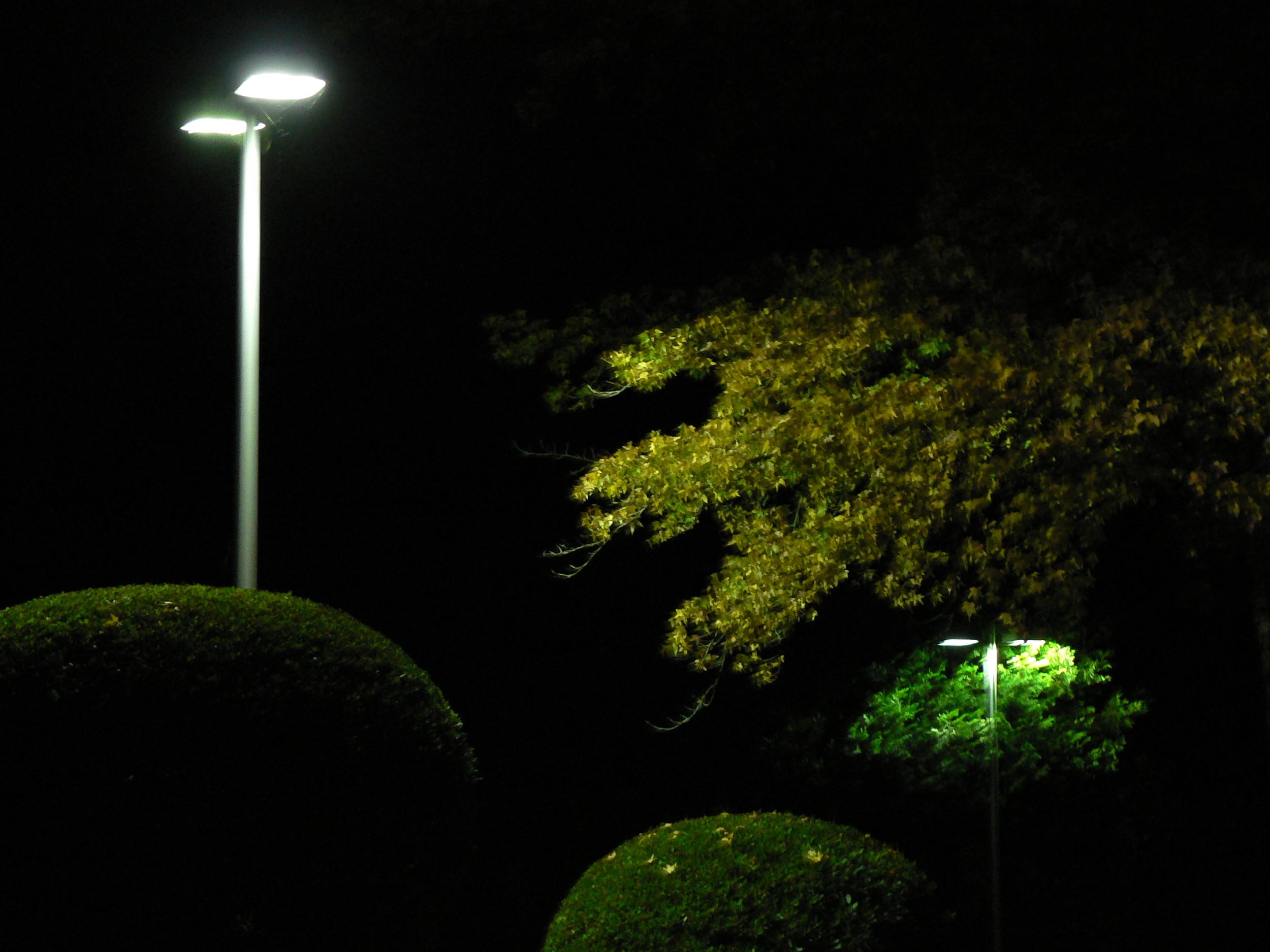 Cascade Lighting Pictures Web Site 005.JPG