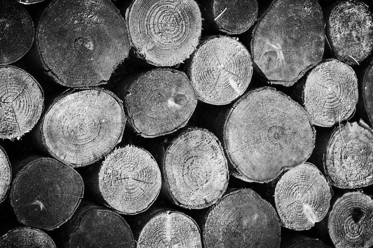 wood-252033_1280.jpg