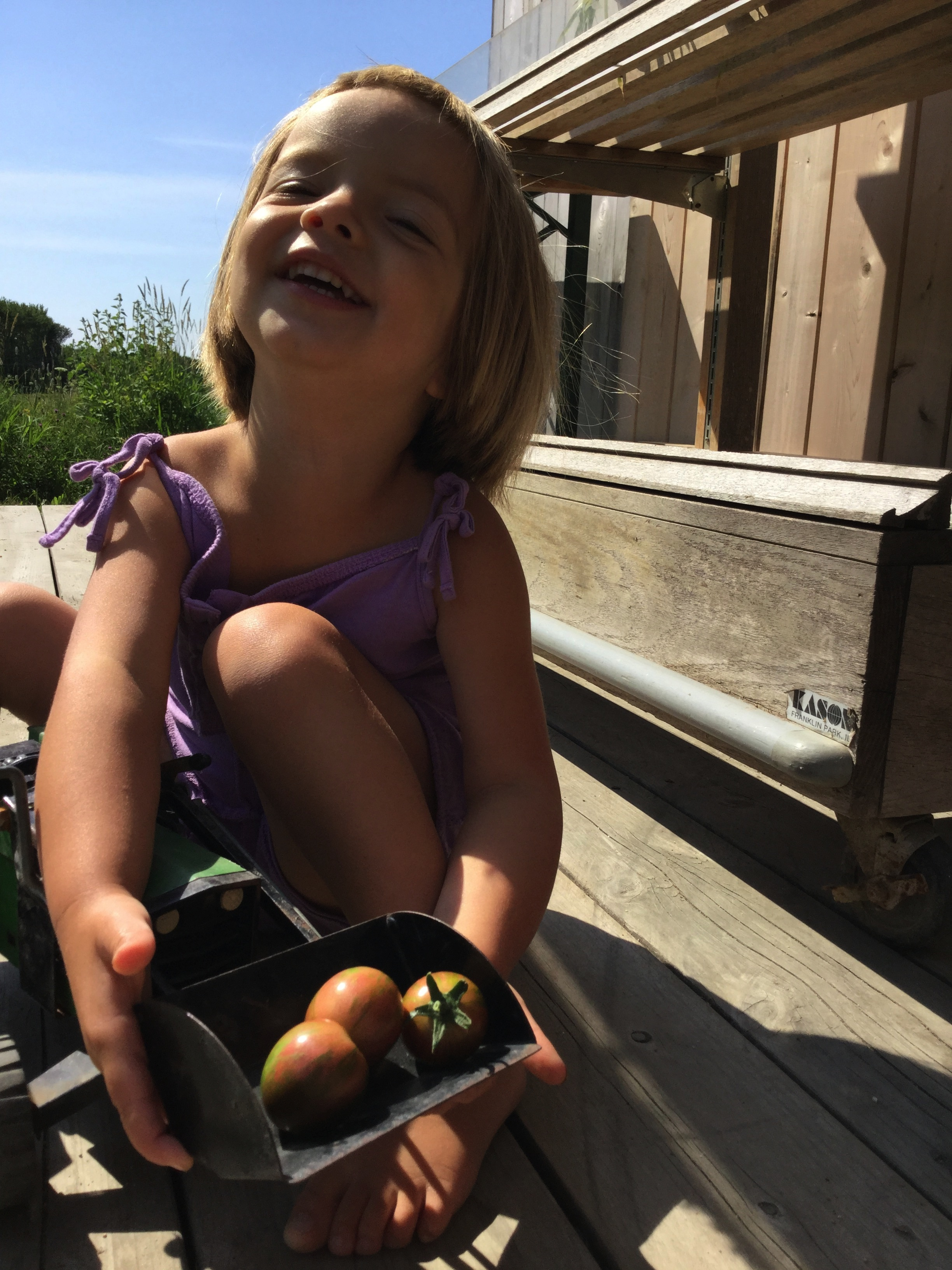 Odetta Violet Wentworth, tomato eater, farm stand security, quality assurance manager.
