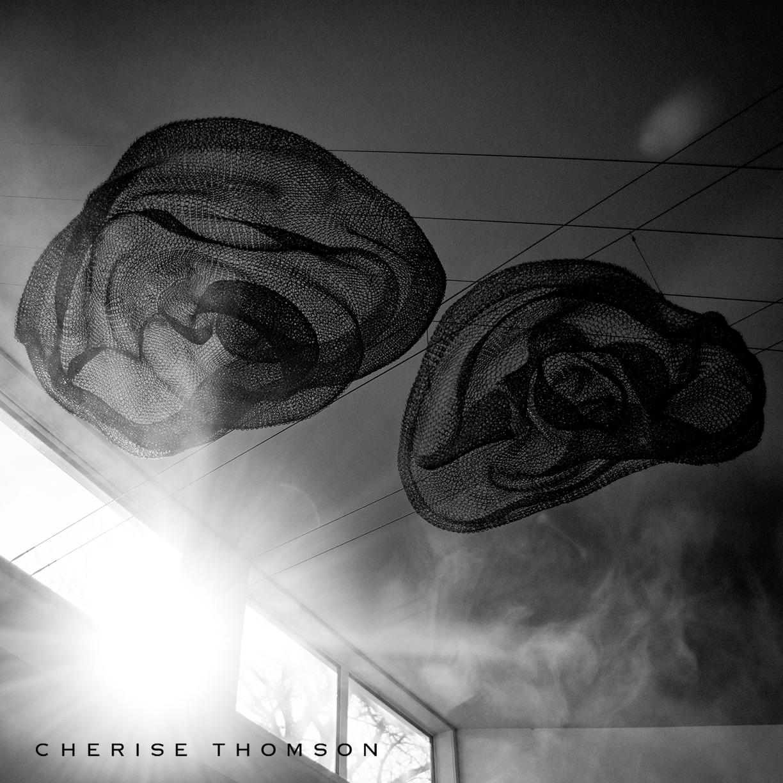 CHERISE THOMSON SCULPTURE | EHU KAI | UNIQUE WIRE SCULPTURE - IMAGE MARCO DE KRETZER