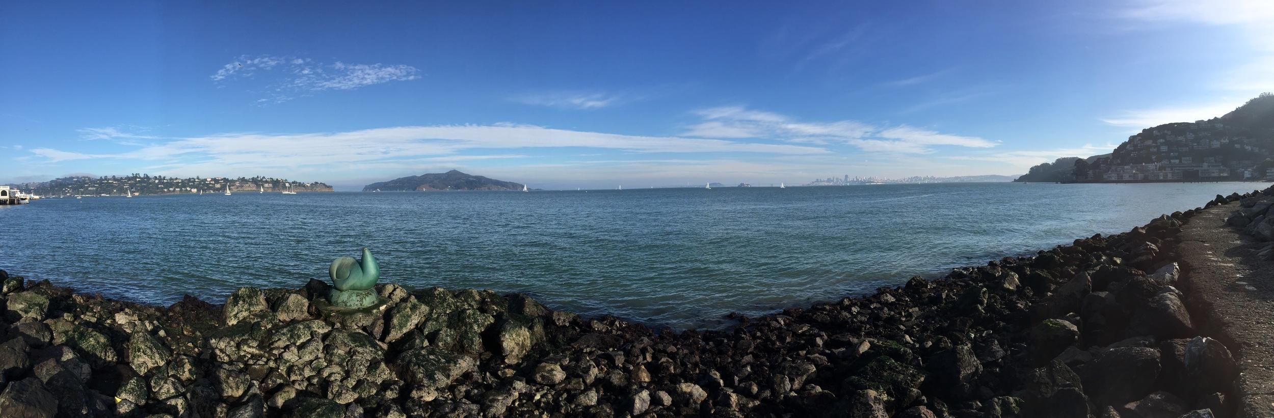 Sausalito, January 17,2015.