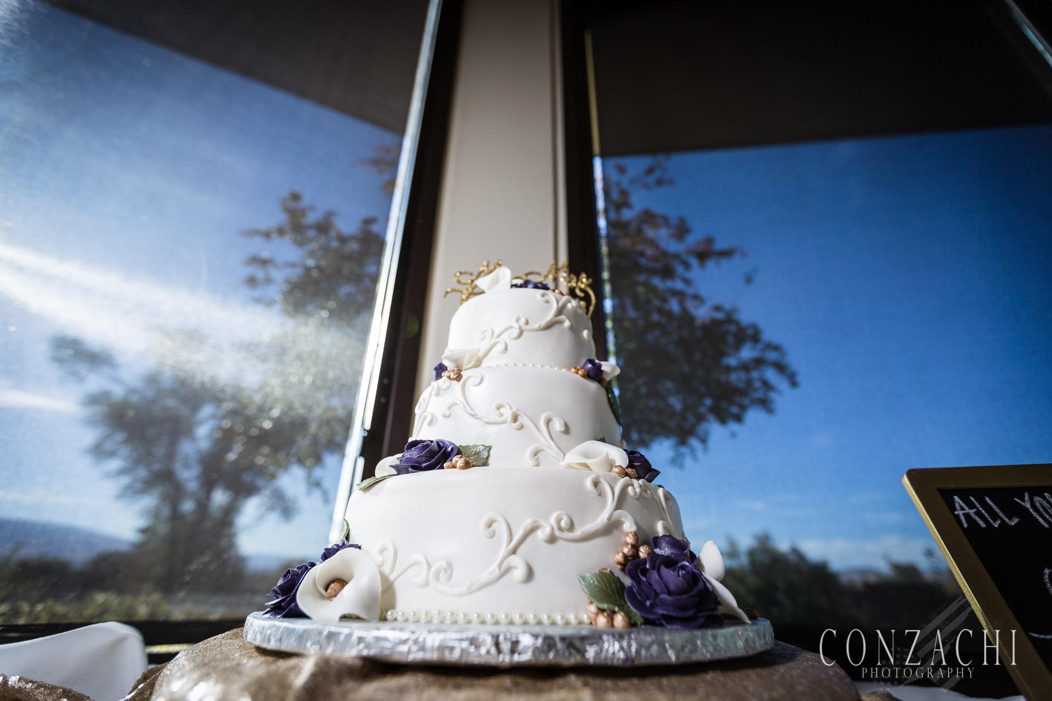 Cuara Wedding Sneak Peek-0088.jpg