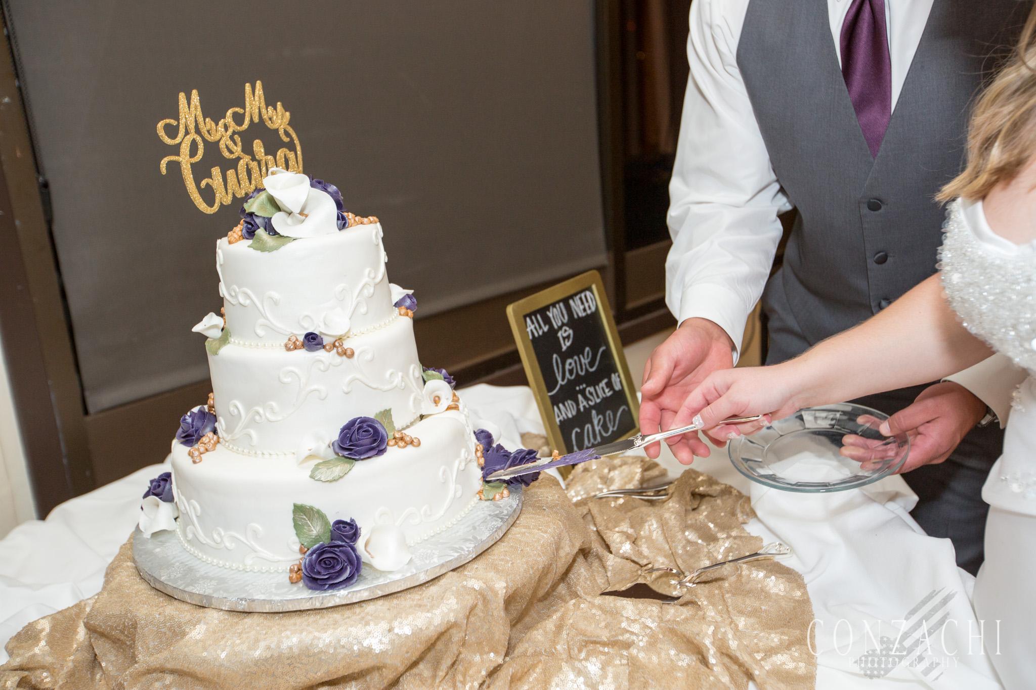Cuara Wedding Sneak Peek-0188.jpg