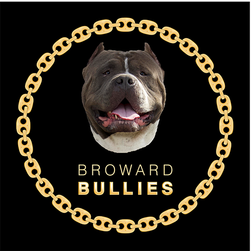 Broward.Bullies Logo B-01.png