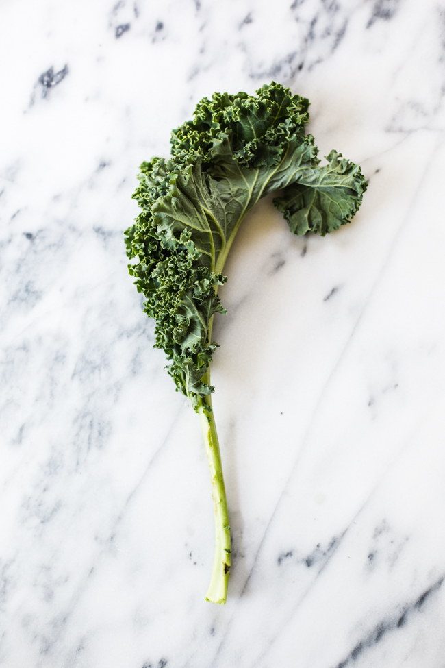 Curly kale for a Rainbow Kale Salad recipe | Edible Perspective