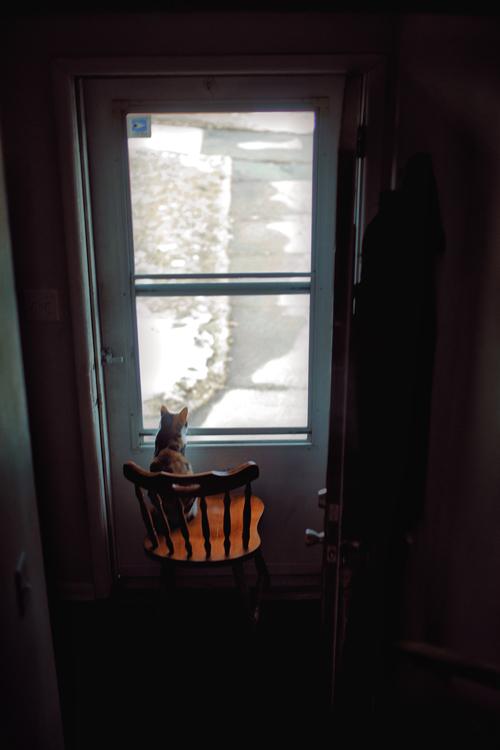 Foosha Window Site.jpg
