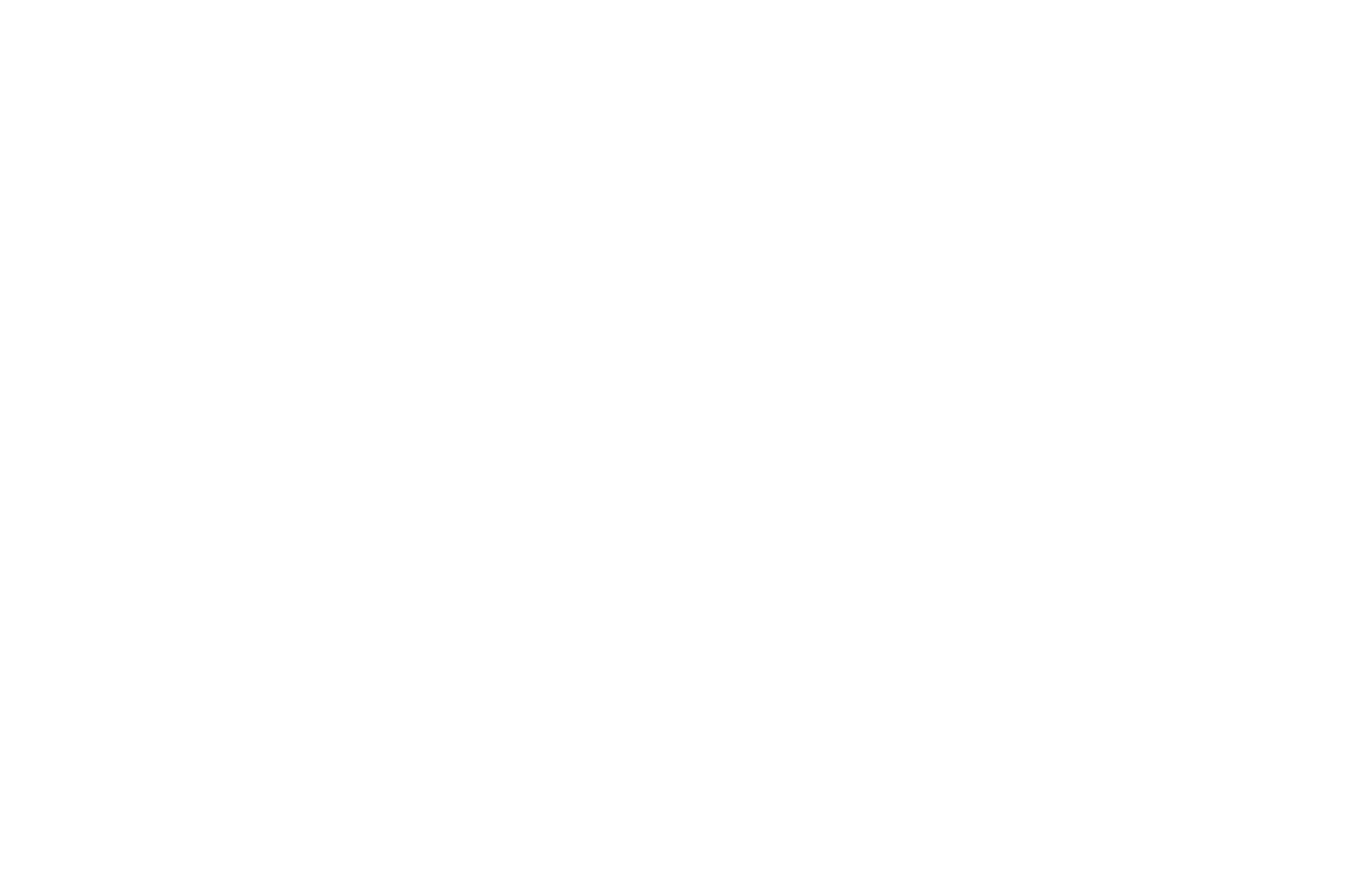 Winner - 2017 Docs Without Borders Film Festival - Award of Exceptional Merit-4.png