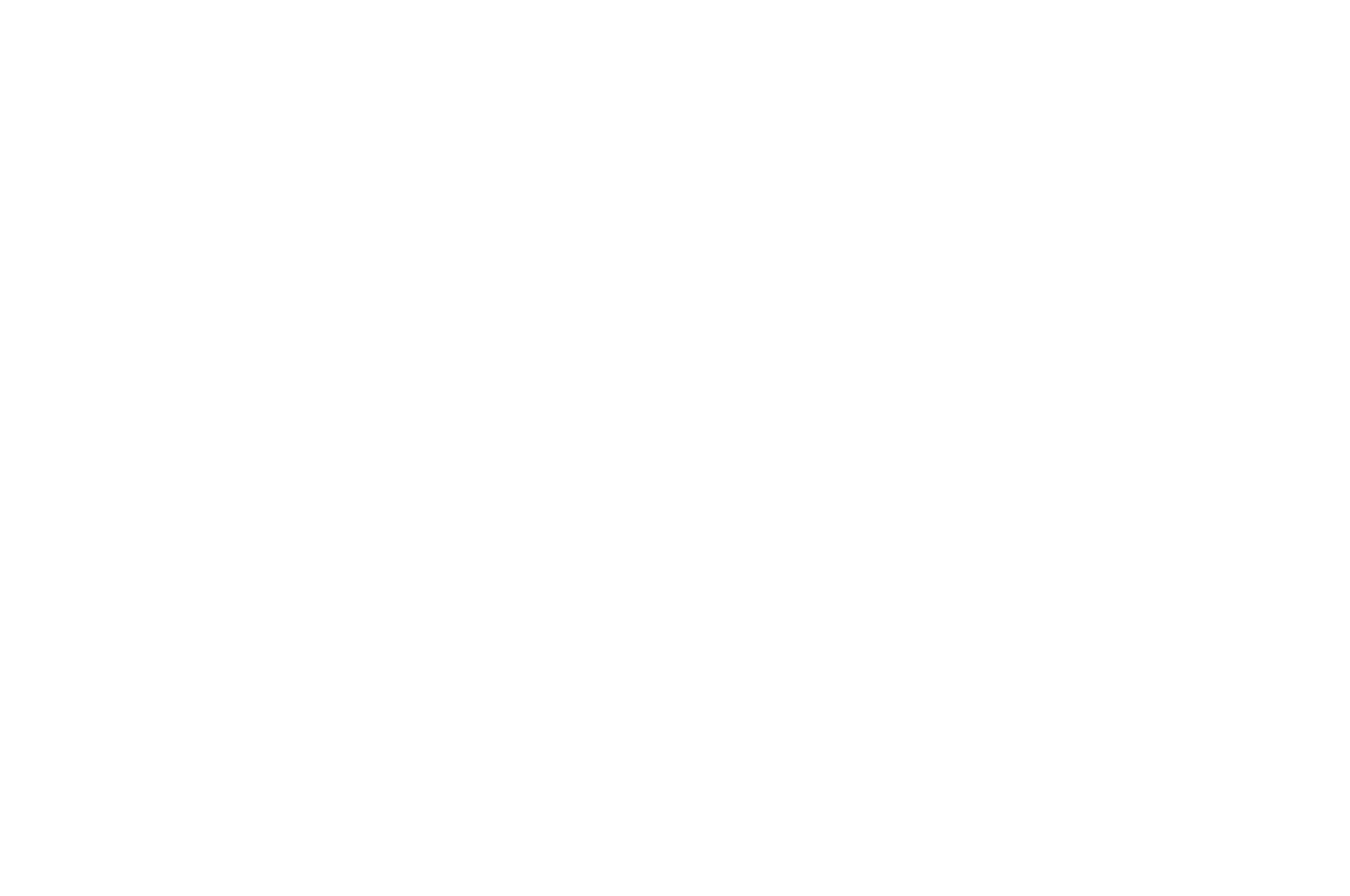 Gold Award Winner - Spotlight Short Film Awards - 2017 white.png