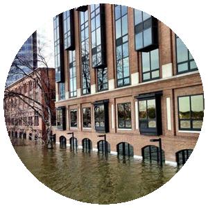 Louisiana Flood Insurance Appeals
