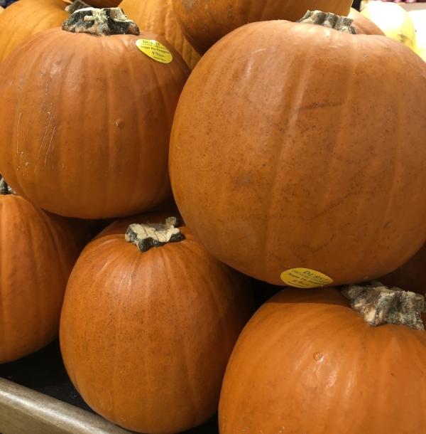 Pumpkins in store.jpg