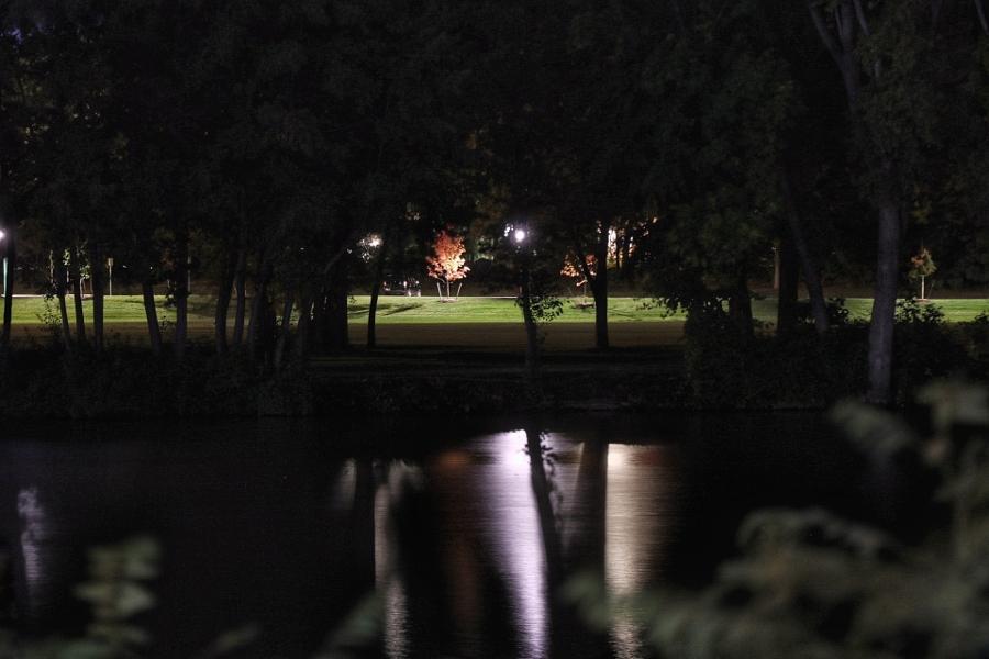 River in the Dark