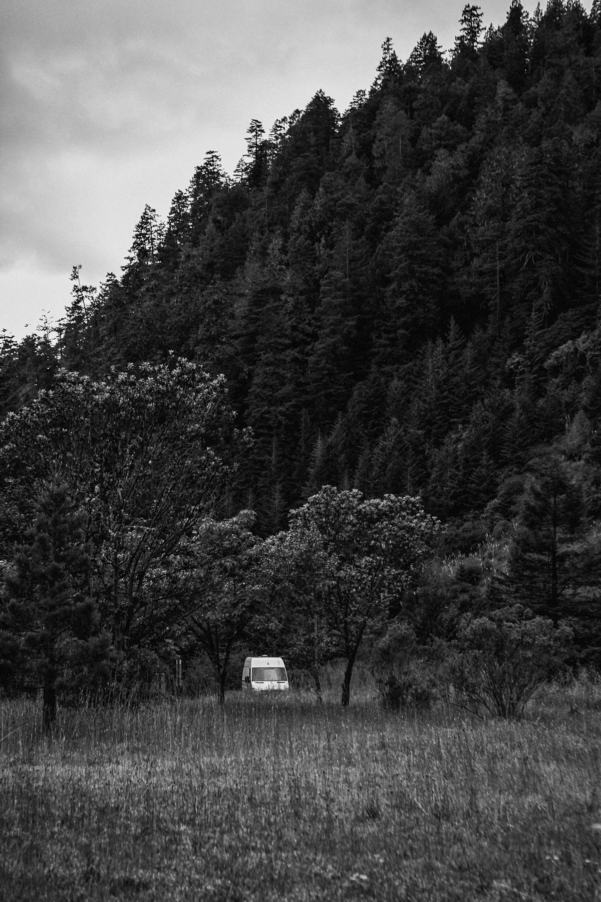Sneaky little van