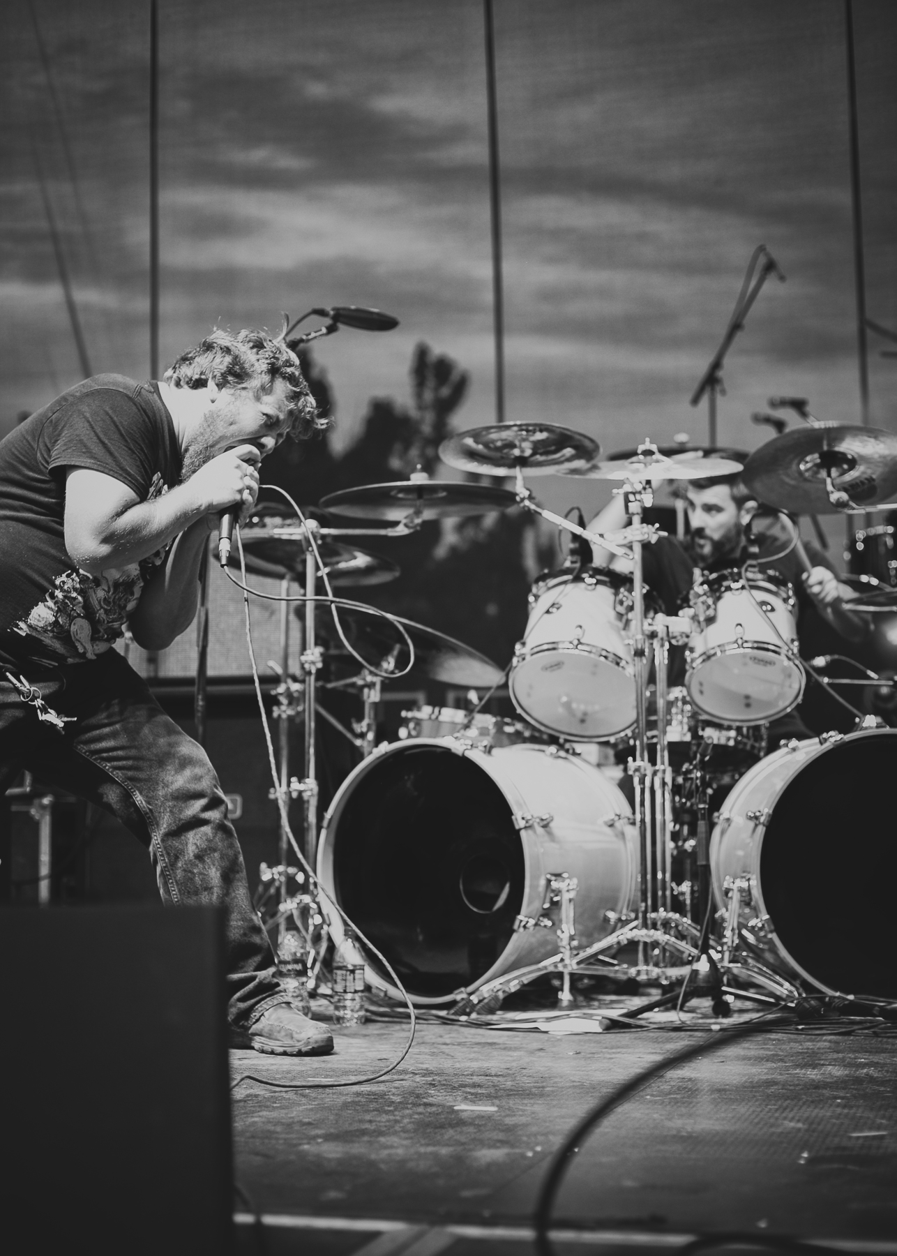 PigDestroyer-9.jpg