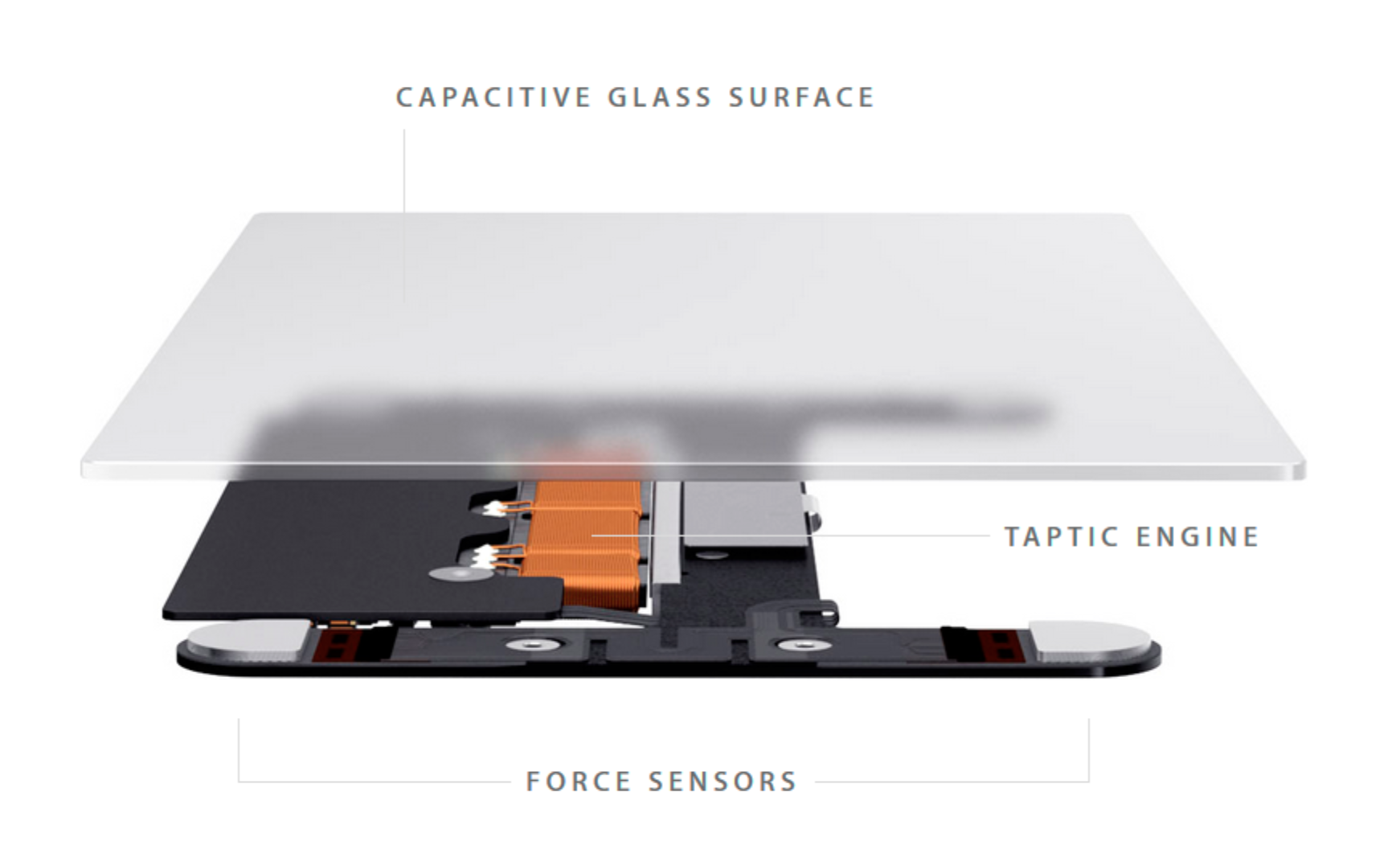 4.3. The new Force Touch trackpad with the Taptic Engine by Apple .