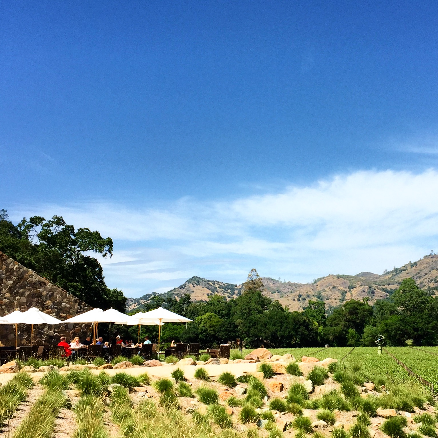 Their outdoor tasting area, overlooking the property.