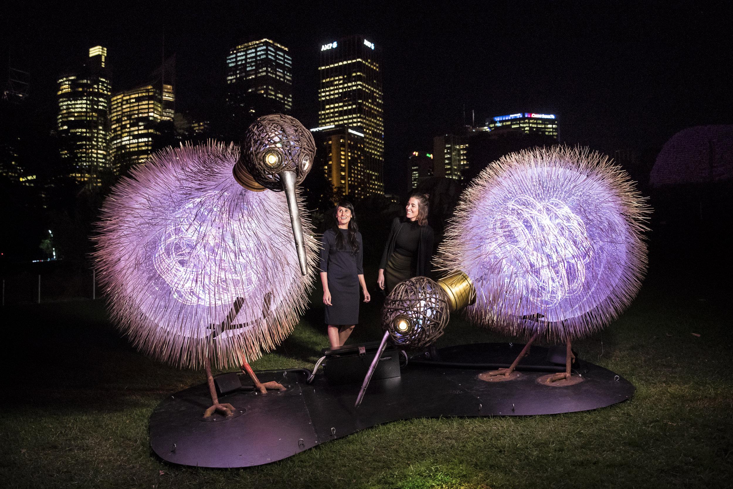 Vivid Sydney - Destination NSW