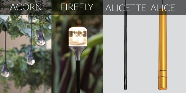Featured:  ACORN ,  FIREFLY ,    ALICETTE   ,  ALICE