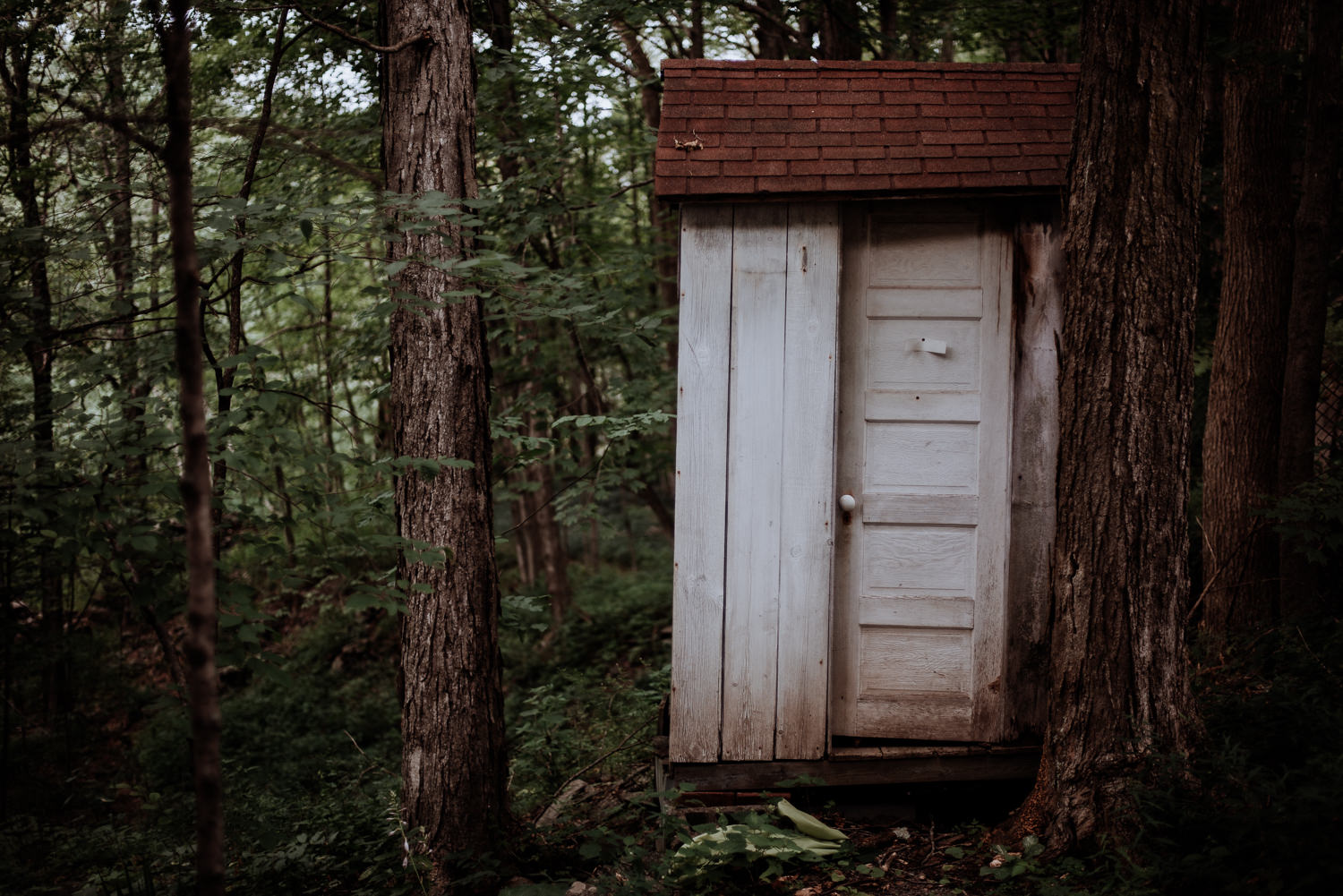 cool little outhouse in forest