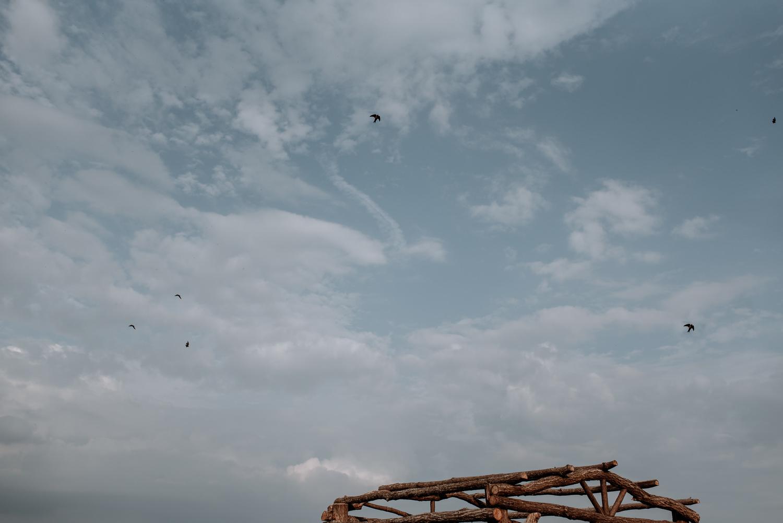 birds fly over wedding altar